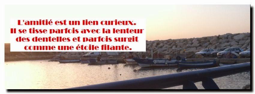 sms d 39 amour 2018 sms d 39 amour message jolie citation d 39 amiti veritable. Black Bedroom Furniture Sets. Home Design Ideas