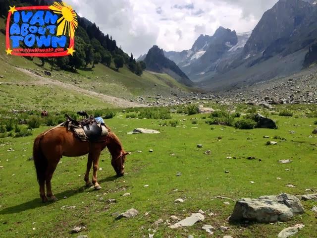 Sonamarg: Pony ride to Himalayan glaciers of Kashmir Valley
