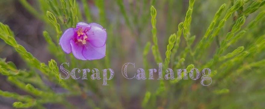 Scrap Carlanog