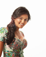 Anjali Hot Photo Shoot Images 1