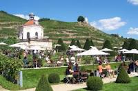 Wanderung im Weingebiet