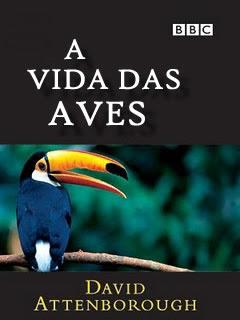 BBC: A Vida das Aves - Série Completa - Legendada