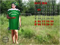 Sexiest calendar Adriana Bahmuţeanu Campanie electorală funny photo