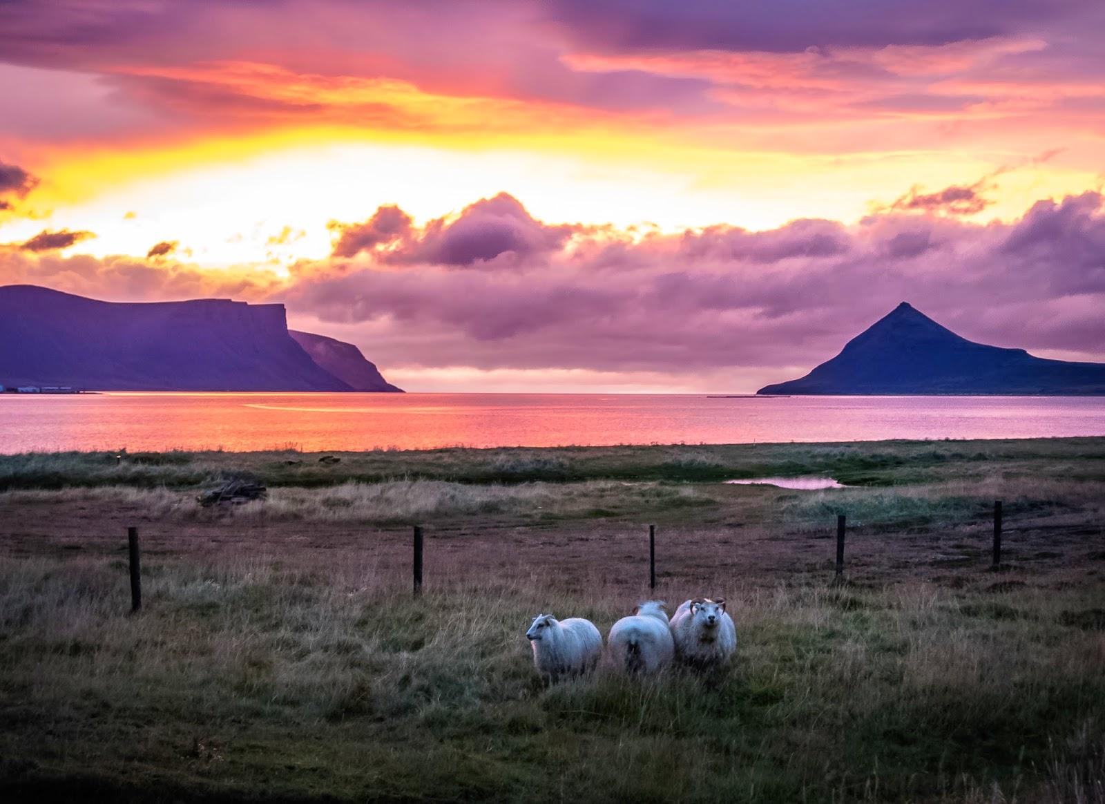 Fiordos del Oeste, Dynjandi