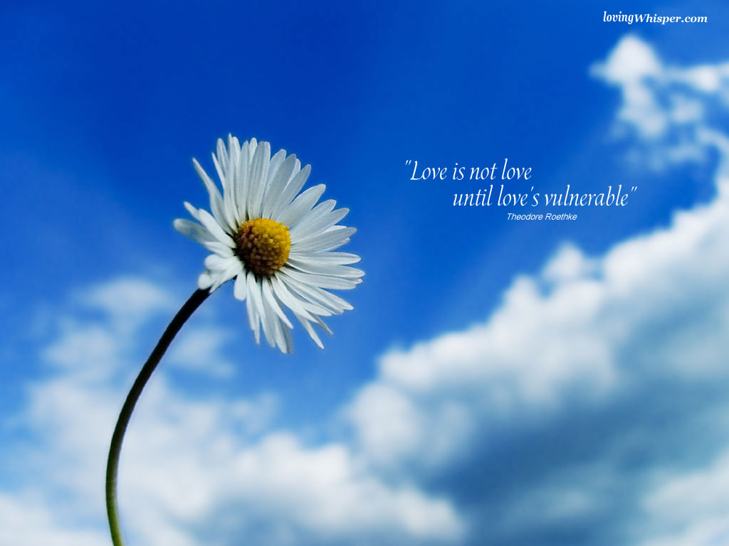 http://1.bp.blogspot.com/-fxEO363a2mk/TwLm2eD3GUI/AAAAAAAAMAc/-rrBVTx3R6Y/s1600/Romantic-Wallpapers-2.jpg