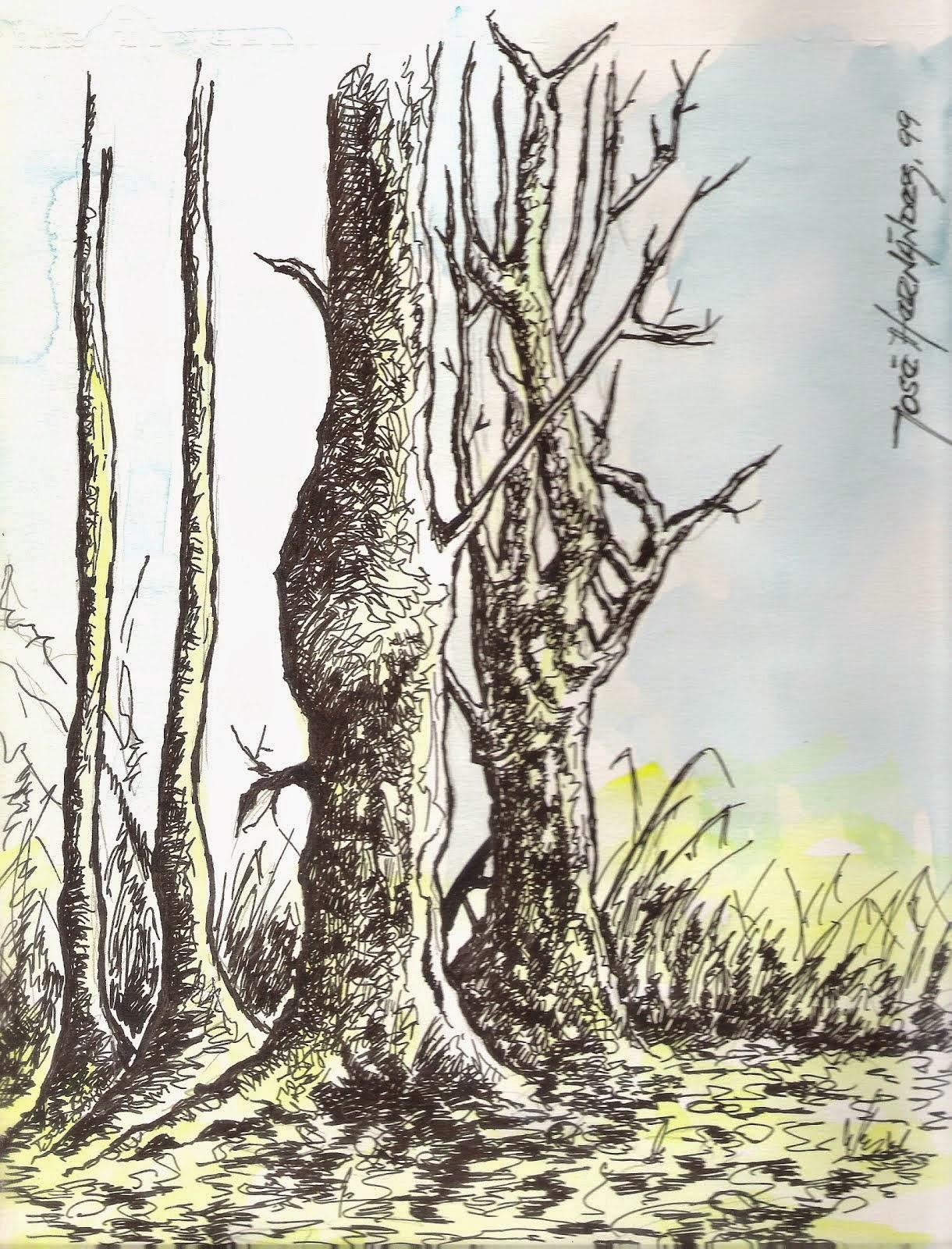 Árbol Deshojado