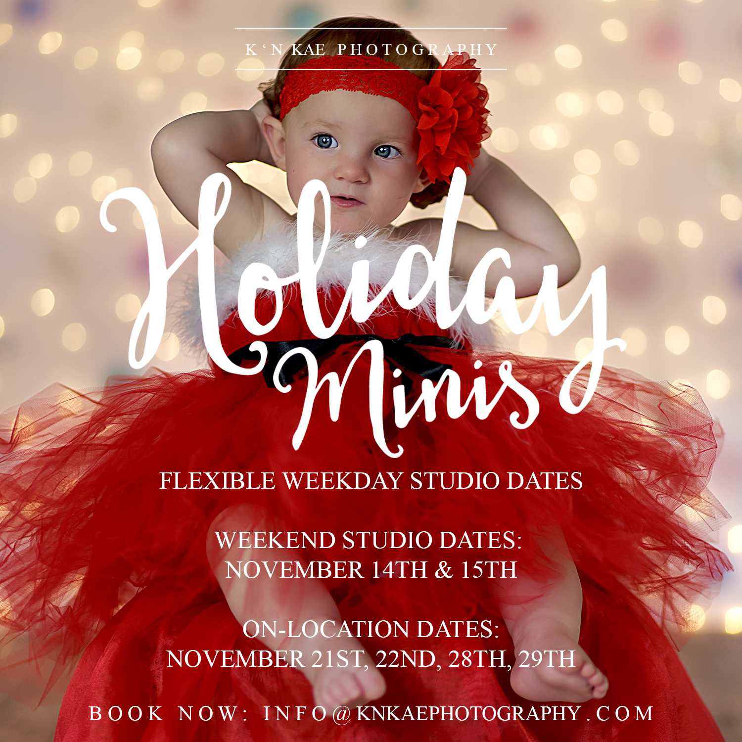 christmas 2015 holiday minis book now to secure availability first come first serve - 2015 Christmas Specials