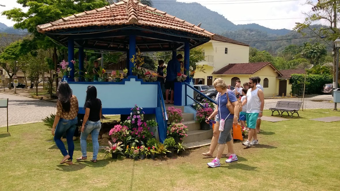 As flores de São Pedro da Serra