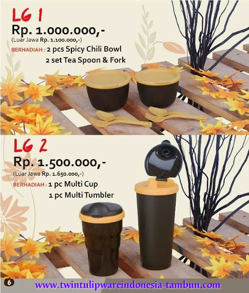 Level Gift Twin Tulipware | September - Oktober 2014