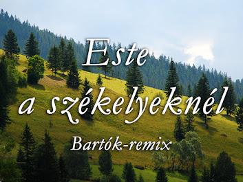 Este a székelyeknél (Bartók-remix)