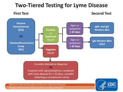 Lymes Natural Treatment Juicing