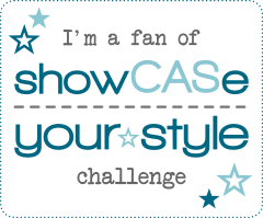 ShowCASe Challenge Blog