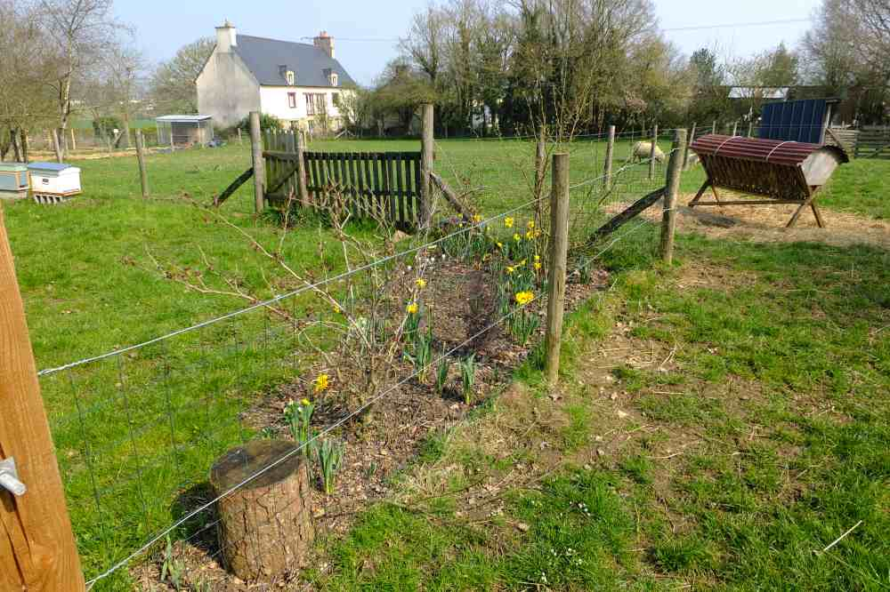 Permaculture in brittany no dig gardening for Permaculture bretagne