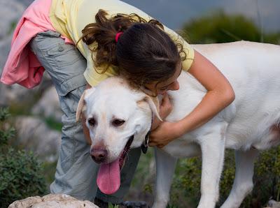 Lealtad y Compañía del Perro