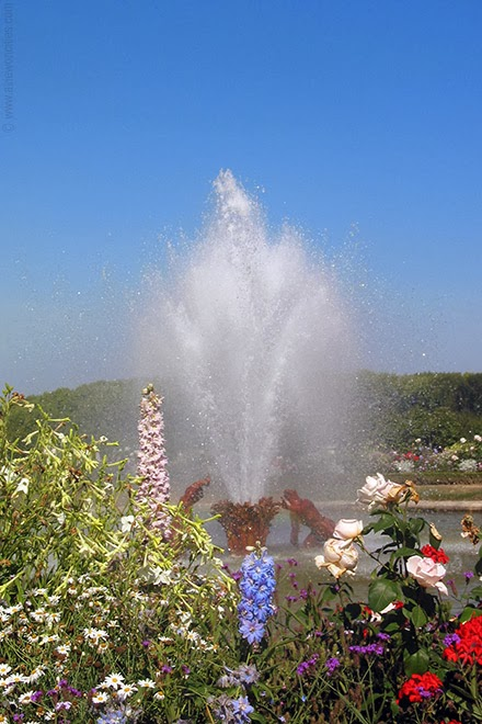 Flowers-and-fountain-Versailles-Palace