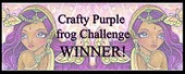 I Won At Crafty Purple Frog