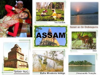 Assam sight seeing