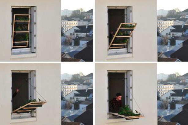Colocando o jardim para fora da janela