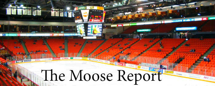 The Moose Report