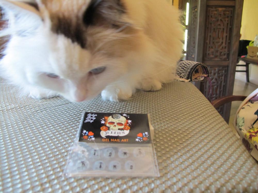 Catsparella: Kokoro Kitty Tests Out Some Black Cat Nail Art