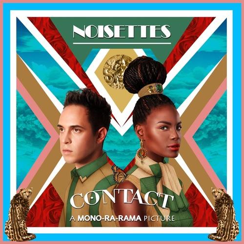 Noisettes Contact