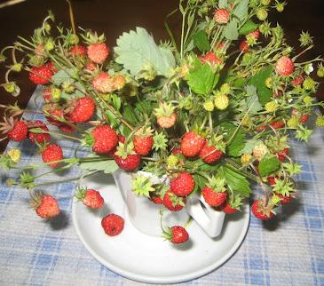 Tu último ramo de fresas