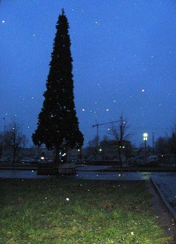 Гатчина зимой