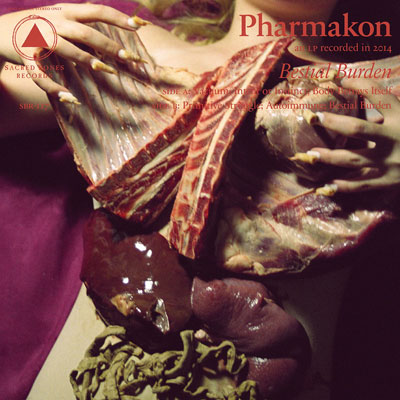 The 10 Best Album Cover Artworks of 2014: 01. Pharmakon - Bestial Burden