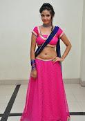 Shreya Vyas photos at Bengal Tiger audio-thumbnail-1