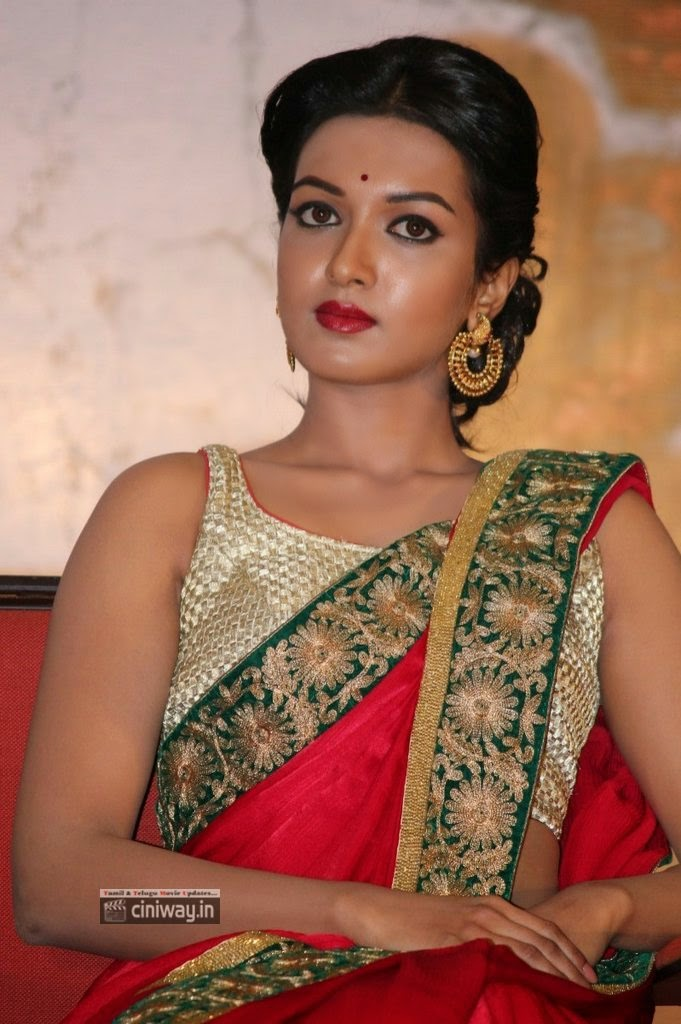 Madras-Actress-Catherine-Tresa-Latest-Stills-at-Movie-Audio-Launch