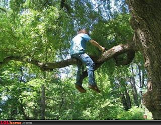 Cortador de árvores profissional