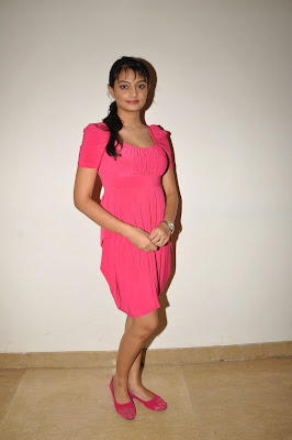 Actress+Nikitha+Narayan+Hot+Photos+in+Pink+Dress+at+Pizza+2+Villa+Audio+Release+Function+CelebsNext+0029 Nikitha Narayan Pictures in Pink Dress at Pizza 2 Villa Audio Release Function