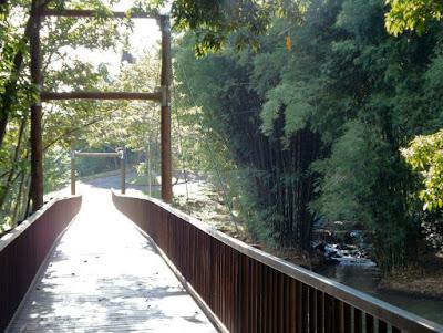 Ponte de madeira sobre rio em Brotas/SP (foto: Jean Tosetto).