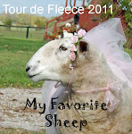 Team My Favorite Sheep