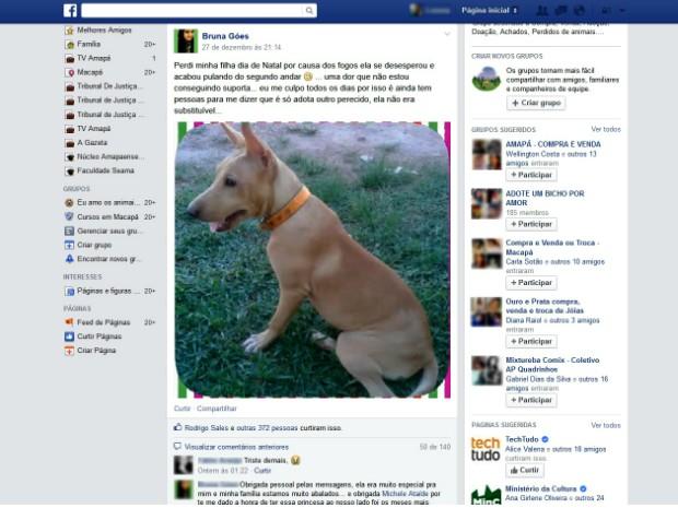 Dona do animal postou mensagem em um grupo no Facebook relatando a tragédia (Foto: Reprodução/Facebook)