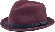 stingy brim wool felt hat from The Hat House NY