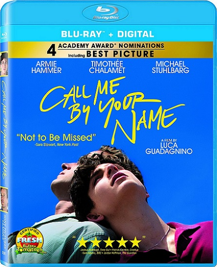 Call Me by Your Name (Llámame por tu nombre) (2017) m1080p BDRip 11GB mkv Dual Audio DTS 5.1 ch