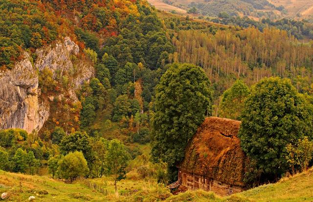Rezervaţia Vânătările Ponorului poze frumoase toamna autumn image
