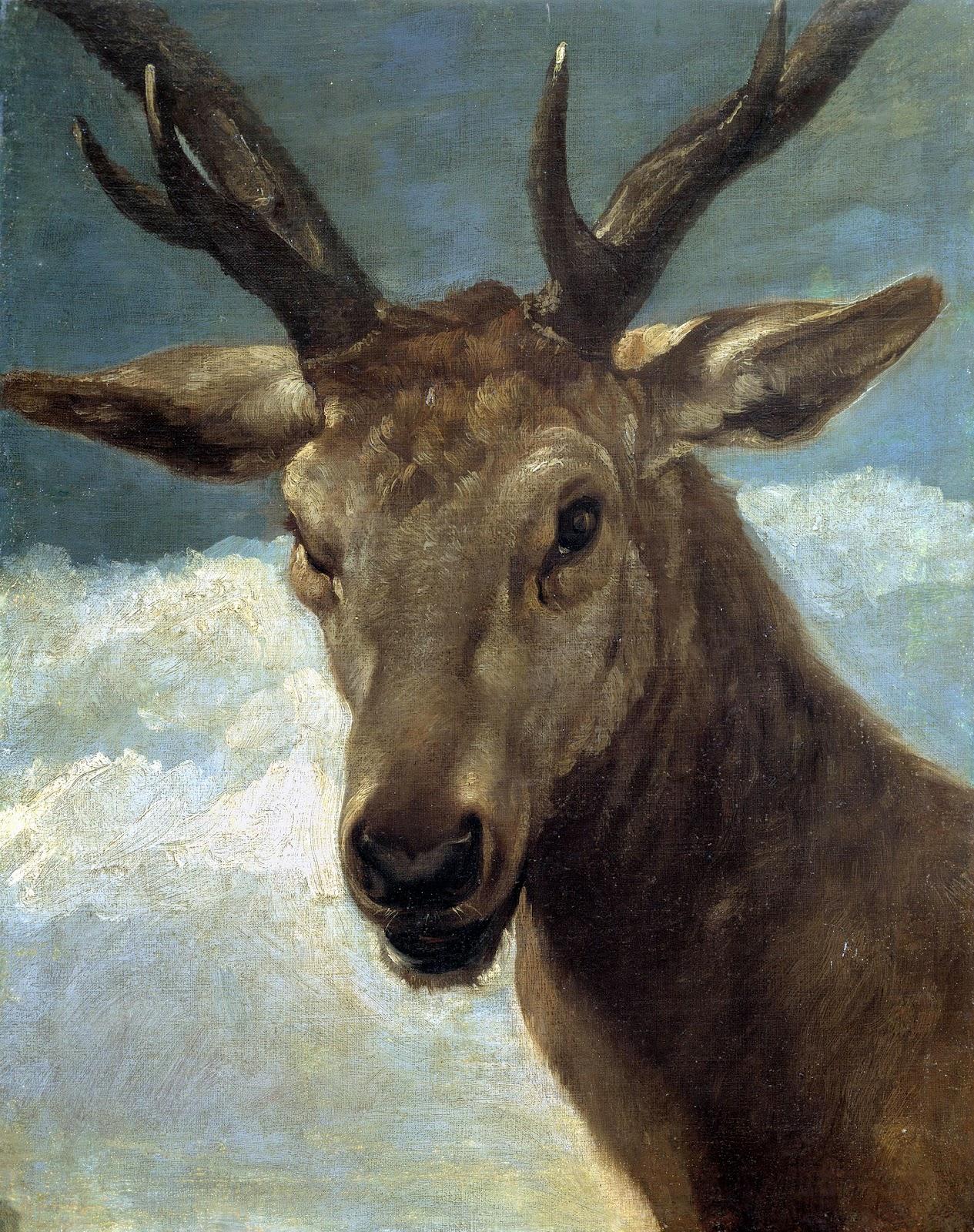 Redes observatorio an lisis y reflexi n sobre la cuerna for Cabeza de ciervo