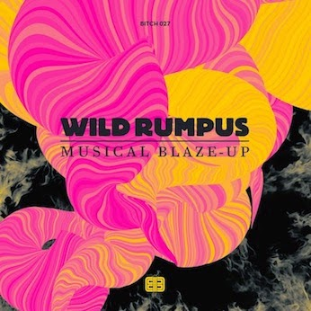 Wild Rumpus debut album Musical Blaze-Up