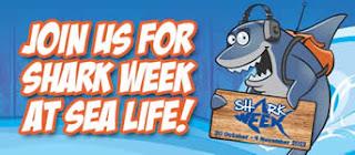 Brighton Sea life voucher for Shark week