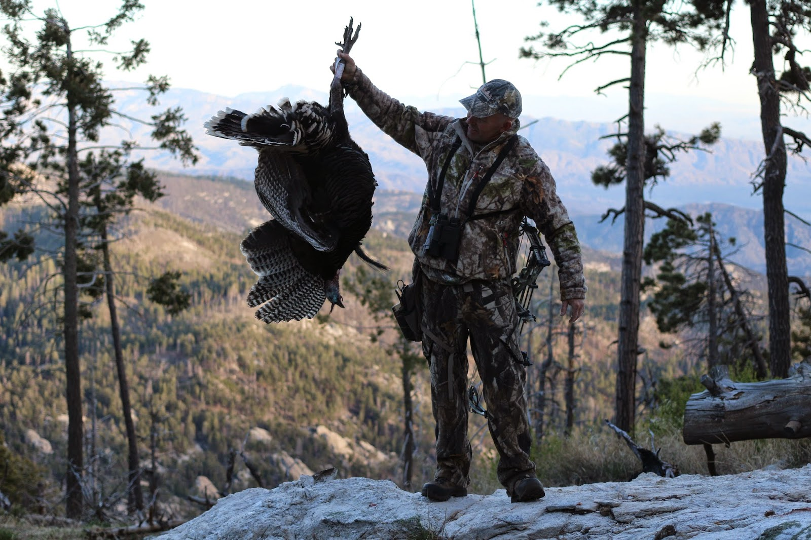 Arizona auction gould 39 s turkey hunt with casey brooks for White mountain apache game and fish