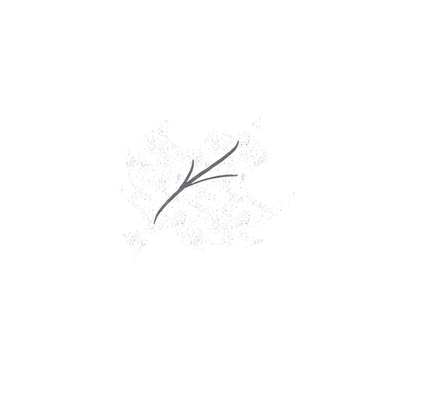 Canada Bliss' Simple Career Life