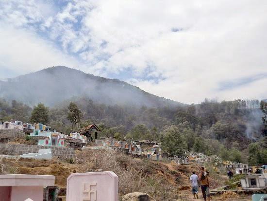 Đốt nhang viếng mộ gây cháy rừng trồng trên núi Bà Hỏa