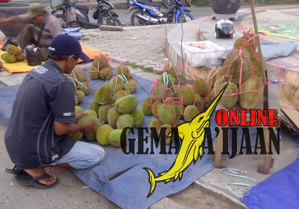 Buah Durian Jadi king of fruit