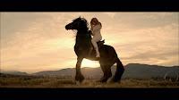 beyonce horse