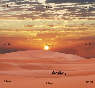 shelley saunderss: The Sahara Desert in Africa