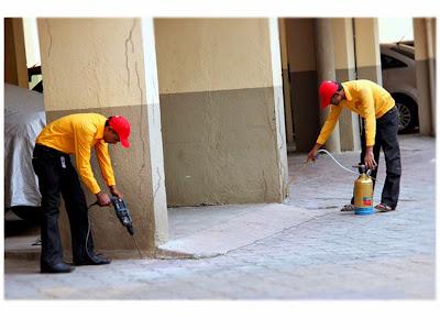 Sử dụng thuốc diệt mối an toàn và đảm bảo vệ sinh môi trường
