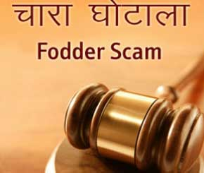 assignment on fodder scam