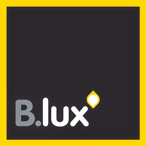 B.Luz logo